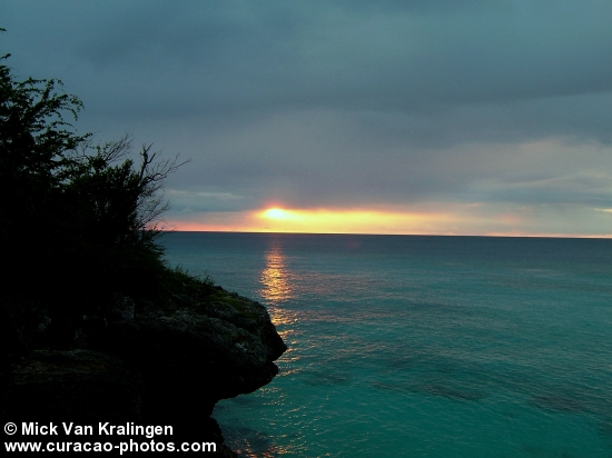 Sunset grote Knip