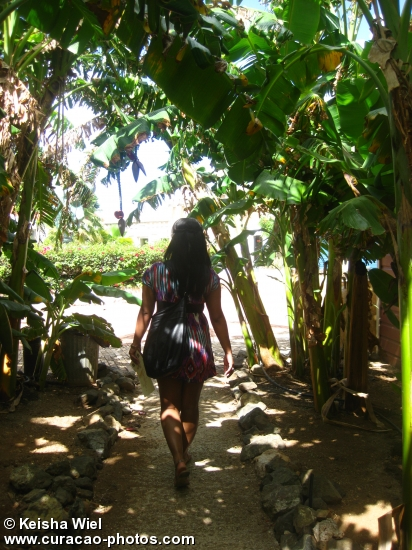 Walking through Kura Hulanda