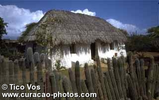 Tico'sKunuku House