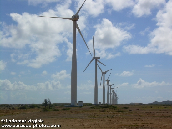 Wind turbines at Playa Kanoa